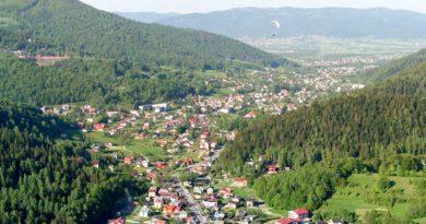 źródło: Andrzej Kosiński / Wikipedia
