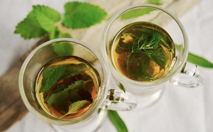herbata zielona ciekawostki