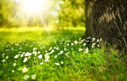 10 najlepszych atrakcji dla dzieci wiosną