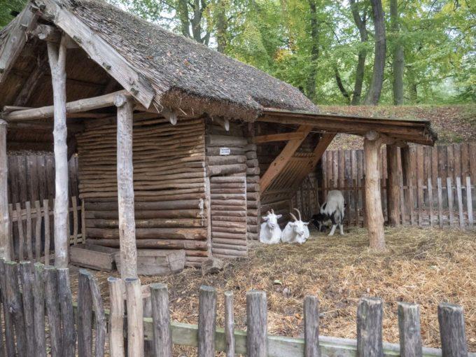 Grodzisko w Sopocie