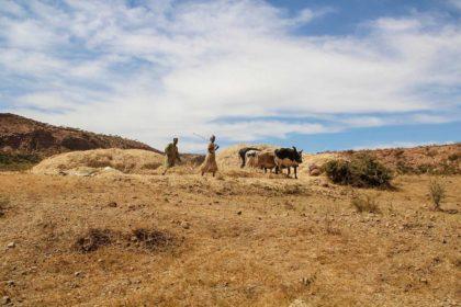 Erytrea - 24 ciekawostki i zaskakujące informacje