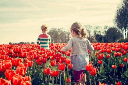 10 najlepszych atrakcji w Holandii