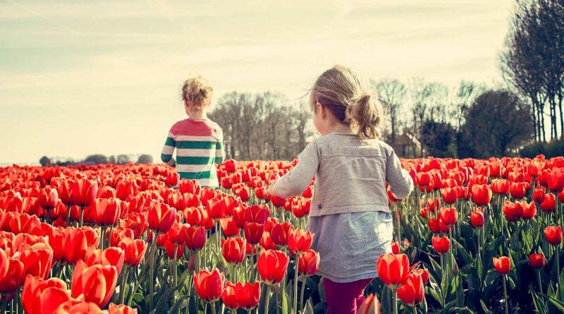 dziewczyny i tulipany