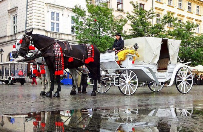 konie w Krakowie