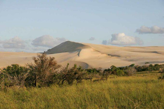 piaskowe wzgórza