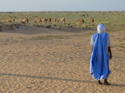 25 ciekawostek oraz mało znanych informacji o Mauretanii