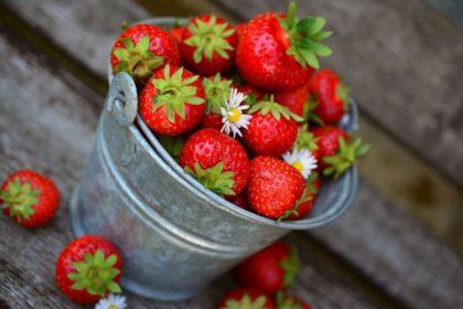 32 najlepszych ciekawostek o truskawkach