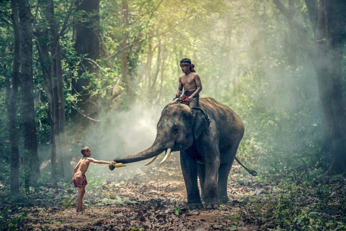 atrakcje w Indiach