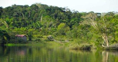 Brazylia - rzeka