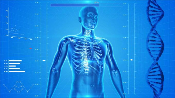 ciało człowieka