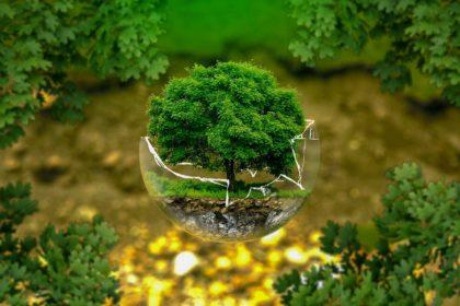 19 interesujących ciekawostek o ziemi