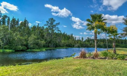 10 najlepszych atrakcji na Florydzie