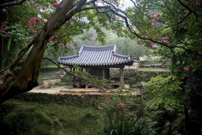 świątynia w środku lasu