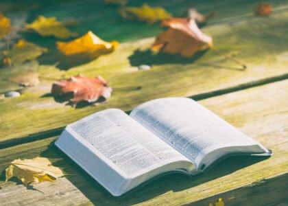 14 ciekawostek biblijne dla dzieci i dorosłych