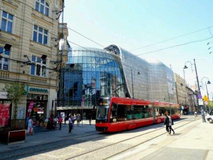 10 najlepszych atrakcji dla dzieci na Śląsku 2021