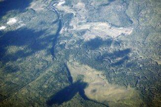 Interesujące Ciekawostki o Lesie Borealnym