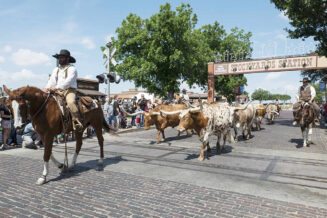 16 najlepszych ciekawostek o Fort Worth w USA
