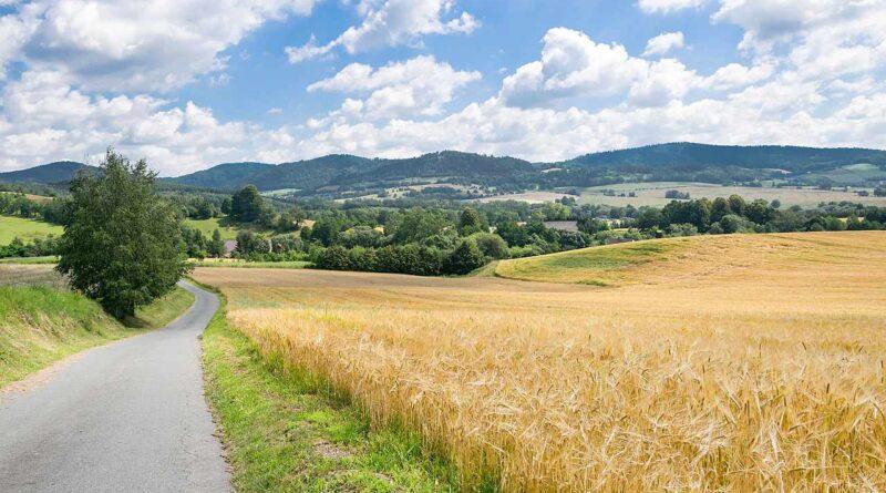 Wzgórza Rogówki