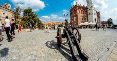 armata na rynku w Sandomierzu