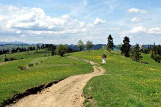 10 Najlepszych Atrakcji w Bukowinie Tatrzańskiej i okolicach