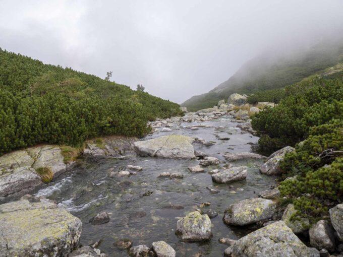 kamienie dolina 5 stawów
