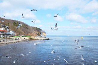 10 Najlepszych Hoteli w Gdyni
