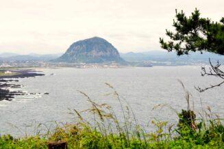 Wyspa Czedżu - Ciekawostki i ważne informacje
