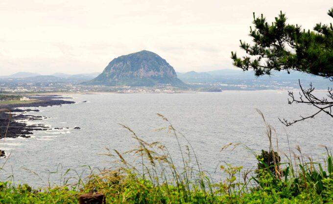 Wyspa Czedżu