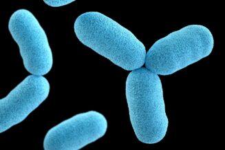 10 Zaskakujących Ciekawostek o Bakteriach