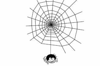 Ciekawostki o pająkach dla dzieci - 10 ciekawostek