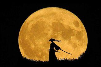 10 ciekawostek, informacji i faktów o samurajach dla dzieci